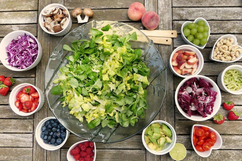 Fachvortrag vegane Ernährung